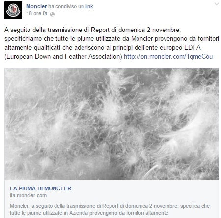 report moncler
