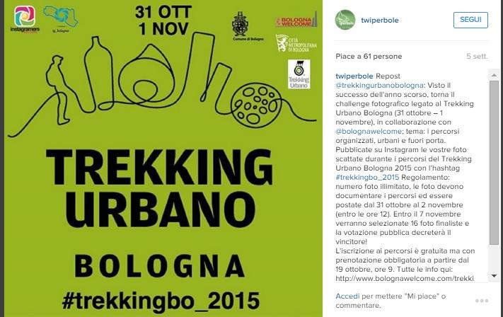 Rimini-pa-social-engangement-e-interazione-mistermedia